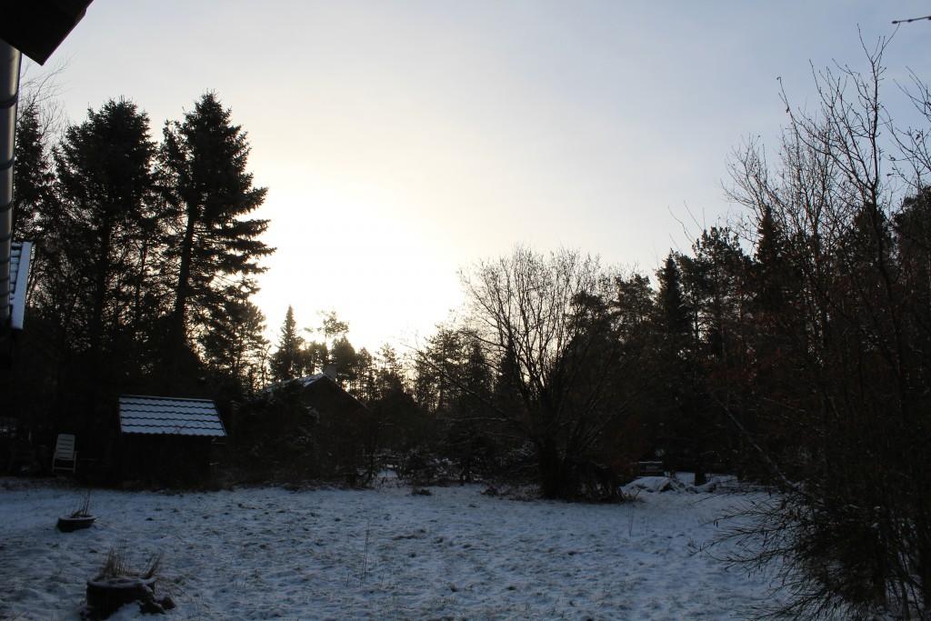 Solopgang - udsigt mod min have kl ca 8. Foto i rfetning øst den 16. februar 2018 af Erik K Abrahamsen