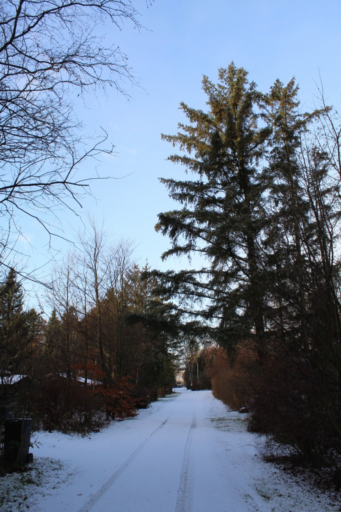 Mit fritidshus i Melby ligger her ud til vjen - kun ca. 300 m fra Syvhøje bronzealderhøje.
