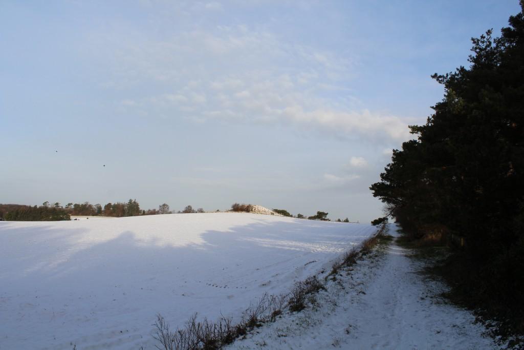 Sti langs snedækket mark op til Syvhøje bronzealder gravhøje. Foto i retning nord den 16 februar kl ca 8.40 af Erik K Abrahamsen.