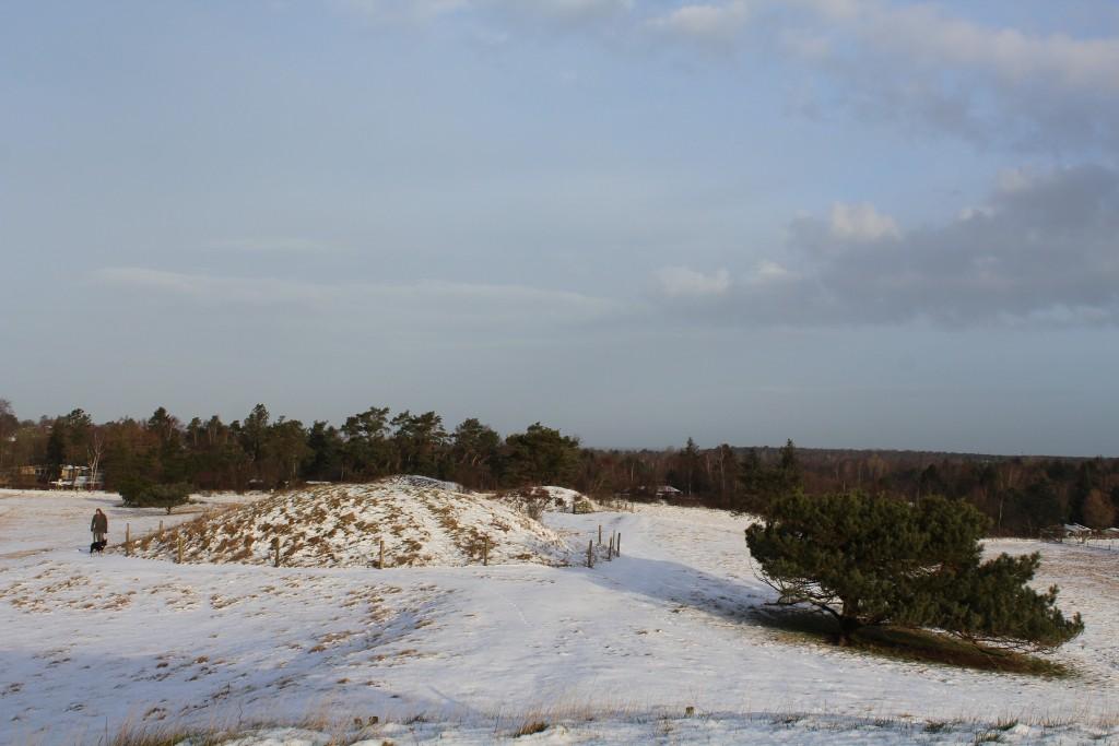 Syvhøje Melby. Udsigt mod gravhøje opført i Dansk Bronzealder 1500-500 f :KR. Udigt mod nord