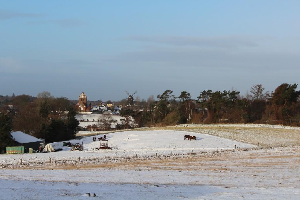 Udsigt fra Syvhøje mod melby Kirke, Melby Mølle og køer udendørs på bonmandens marker