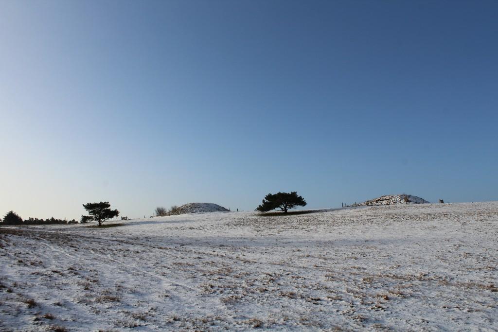 Syvhøje. Udsigt mod bronzealder gravhøje. Foto i retning syd-vest den 16. februar 2018 kl ca 9.15 af Erik K Abrahamsen