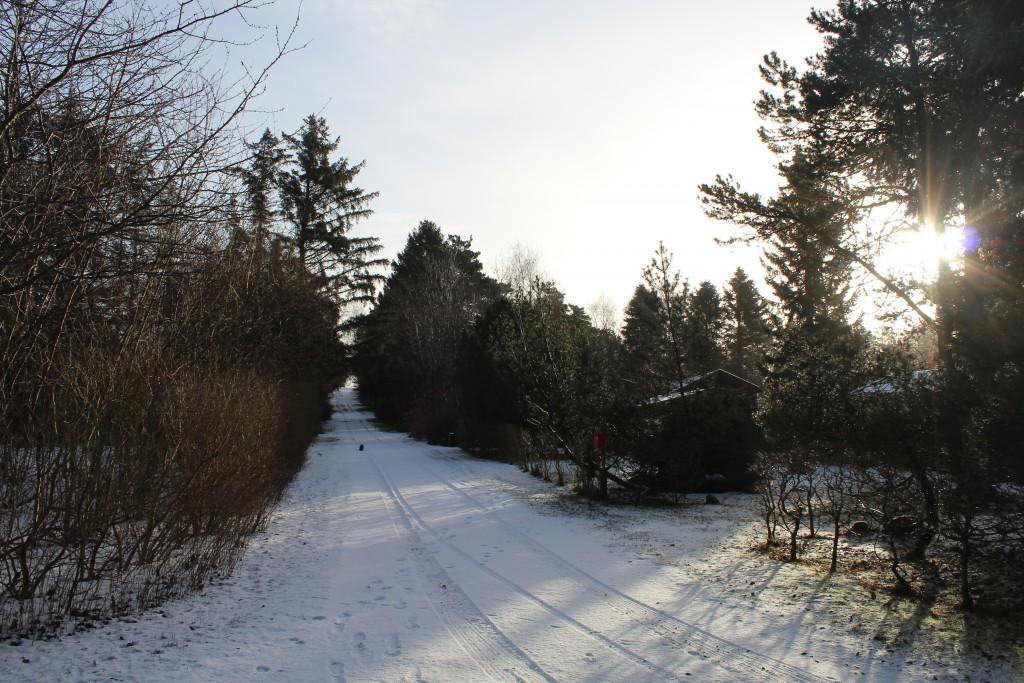 Min vej i Melby,hvor jeg bor permanent hele året rundt