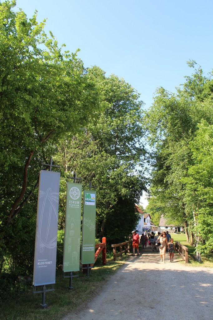 Adgangsvejen til Esrum Møllegård og Esrum Kloster. Foto den 29. maj2+18 af Erik K Abragahmsen.