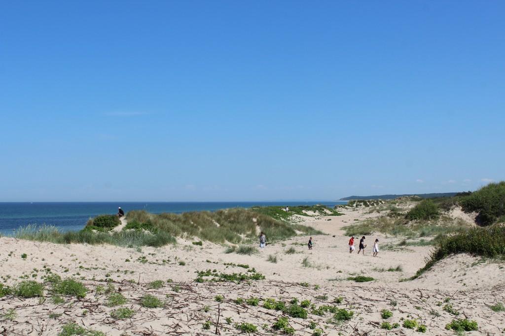 Liseleje Beach. View in direction east to Tisvilde Hegn and Tisvildeleje in horizon. Photo 2. jun 2018 at 1.45 pm by Erik K Abrahamsen.