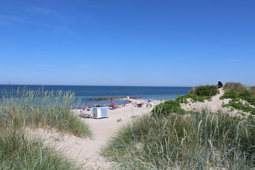 Liseleje beach. View in direction north to Kattegat Sea. Photo 2. june 2018 by Erik K Abrahamsen.
