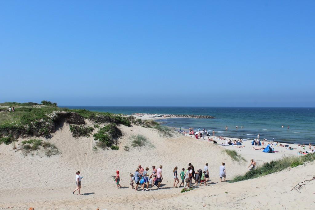"Way through the dunes to beach. View in direction breakwater ""Pynten"" built 1911. Photo 3. june 2018 by Erik K Abrahamsen"