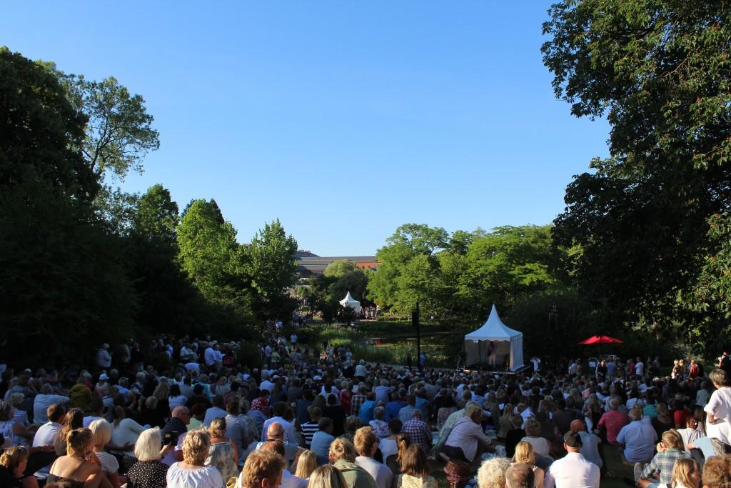 Rasmus Nøhr syner og spiller på scene 1. Foto den 5. juni kl. 19 af Erik K Abrahamsen